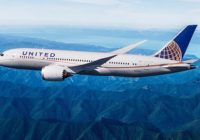 Fiscal de Texas investiga muerte de un cachorro en vuelo de United Airlines