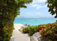 Promueven turismo entre Barbados y Panamá